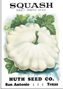 Ruth Seed Co. white squash