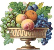 bowl of fresh summer fruit