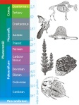 Evolutionary periods of earth development