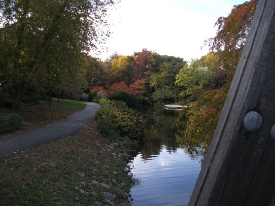 View of fall foliage from a bridge on Lake Anne, Reston VA