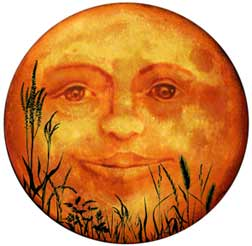 man in the harvest moon
